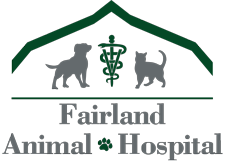 Veterinarian and Animal Hospital in Silver Spring, MD